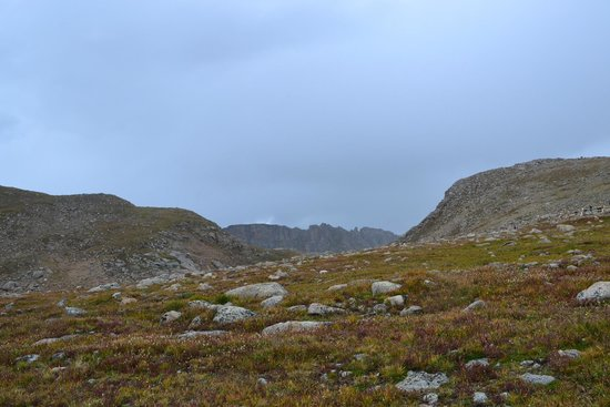 Mount Evans Scenic Byway: Alpine tundra