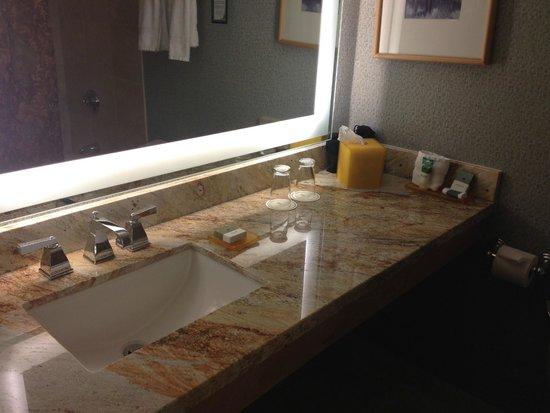 Hilton Denver Inverness : Restroom