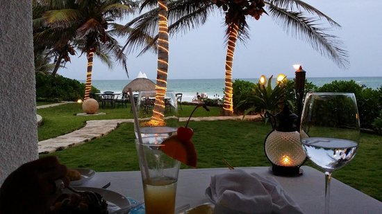 Pavo Real by the Sea: Ocean view
