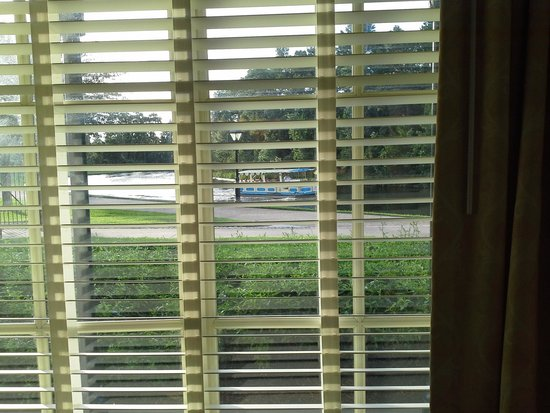 Disney's Port Orleans Resort - French Quarter : looking out room window from inside