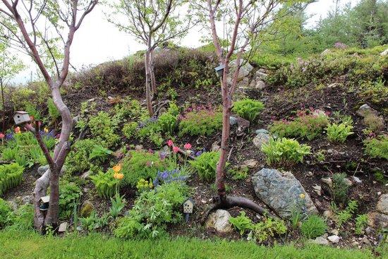 Sleepy Noggin: lovely garden
