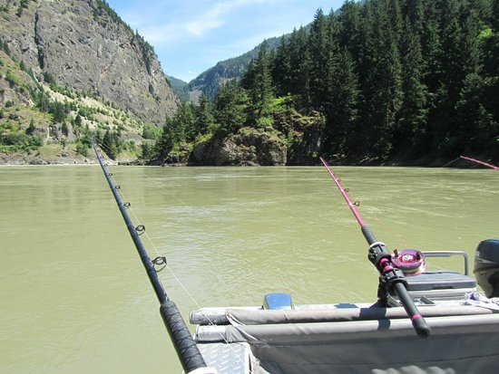Great River Fishing Adventures: Admiring the view of the Fraser Canyon