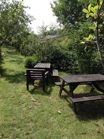 Hele Corn Mill & Tea Room: Lovely grounds