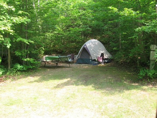 Trillium Woods Campground: tent site