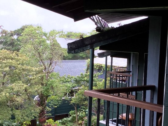 Anywhere Costa Rica - Day Tours: View from our balcony in Monteverde Lodge - Cloud Forest