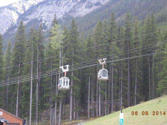 Banff Gondola: Gondola