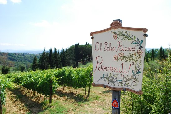 Al Gelso Bianco Farm-Holiday Resort : Al Gelso Bianco