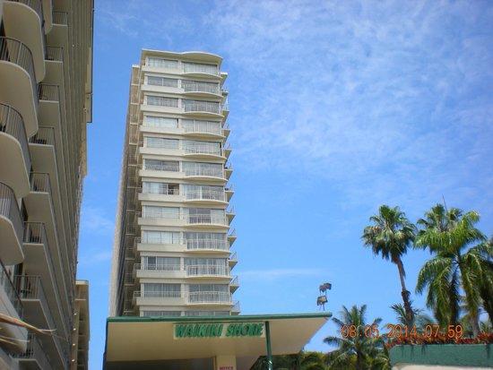 Waikiki Shore : the shore