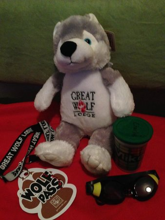 Great Wolf Lodge New England: The stuffed animal we got with our wolf pass