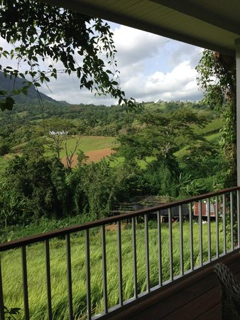 The Blue Sky Resort - Khao Kho: view from room