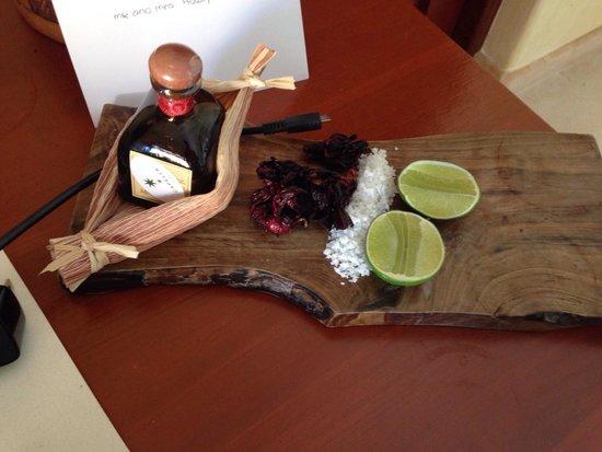 Welcome to Capella Ixtapa!