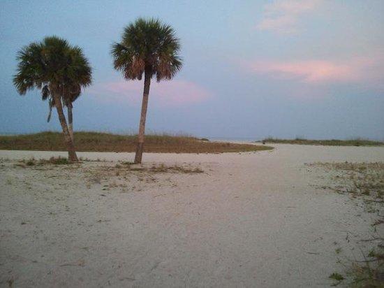 Beachside Resort Motel: Der Weg vom Motel zum Strand