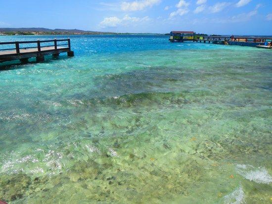 De Palm Island: Snorkeling place