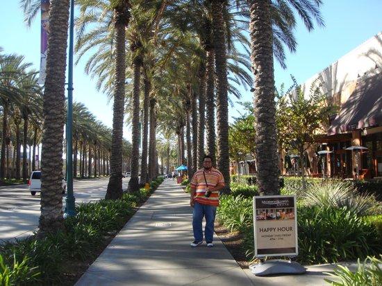 Super 8 Anaheim Near Disneyland: Calle del Hotel...