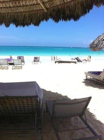 Paradisus Punta Cana Resort: Praia paradisíaca