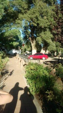 Hacienda Santa Veronica : area verde