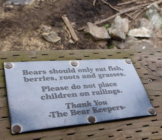 Fortress of the Bear: Mind your children :-)