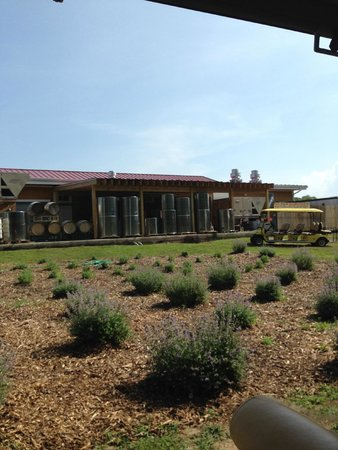 Willow Creek Winery: July 2014