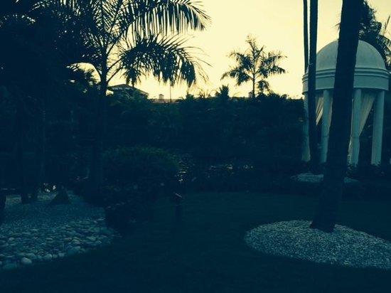 Paradisus Palma Real Golf & Spa Resort: Jardim