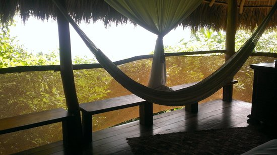 Haramara Retreat: You can get an idea of the mesh and low hanging palms that make the actual view small...