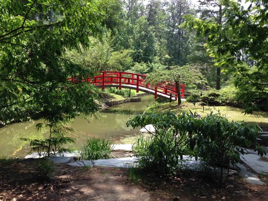 Sarah P. Duke Gardens: Bridge in the Asian Garden