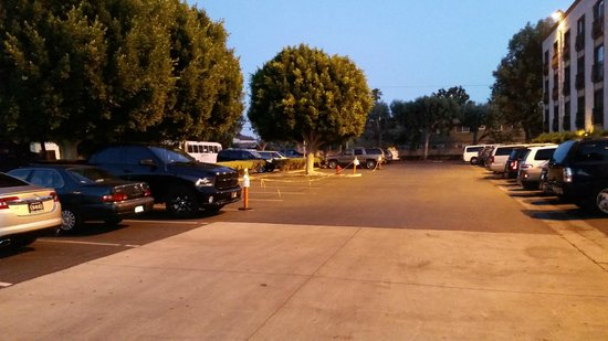 Radisson Suites Hotel Anaheim - Buena Park: buses parked in the lot, leaving no space for customers.