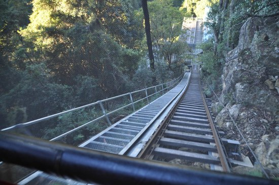 Scenic World Blue Mountains: Bottom of the steepest railway incline in the world!