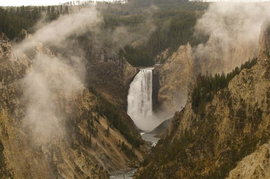 Wild Things of Wyoming: Lower Falls of the Yellowstone River