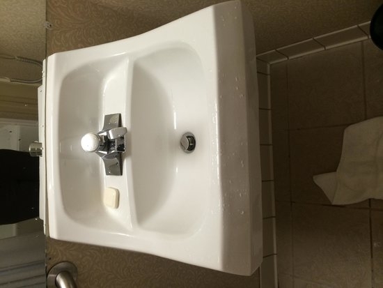 Crowne Plaza Hotel Dallas Downtown : Pedestal sink no counter at all... Only toilet next to sink