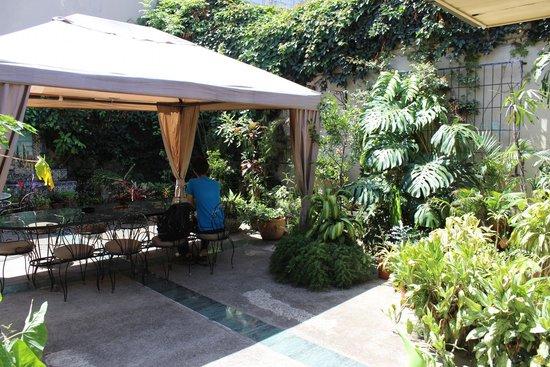 Hostel Casa Del Parque: Garden