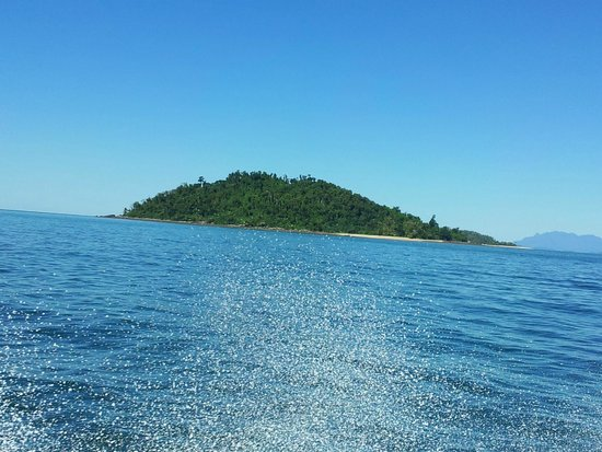 Mission Beach Dunk Island Water Taxi: Just Gorgeous!