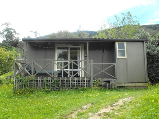 Resolution Bay Cabins: pukeko