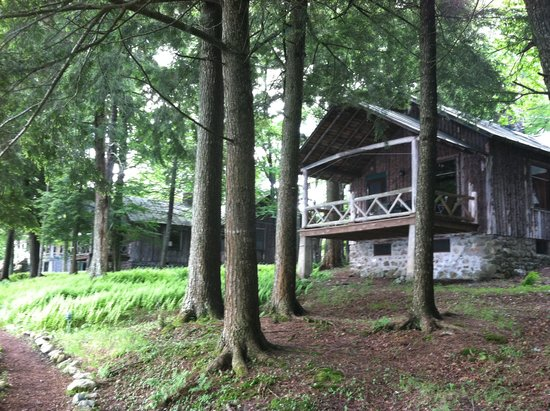 Covewood Lodge: Birch and Spruce cabins