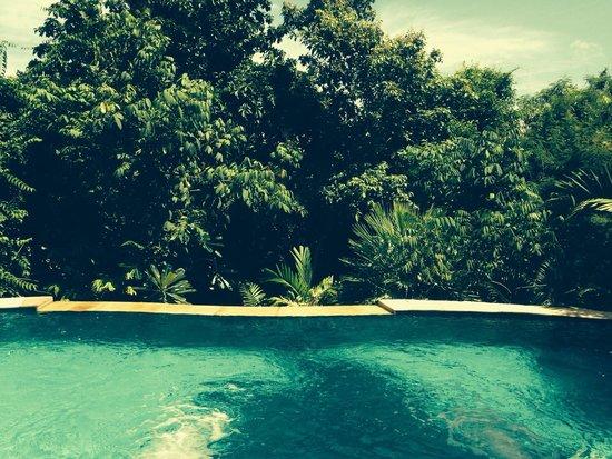 Santhiya Koh Phangan Resort & Spa : Our beautiful pool