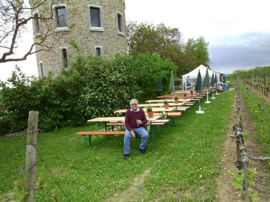 Floersheimer Warte: outdoor cafe style