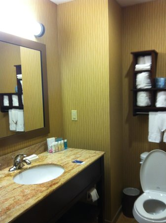 Hampton Inn Magnolia : bathroom