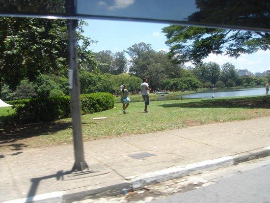 Parque do Ibirapuera: ibirapuera