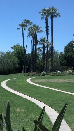 The Langham Huntington, Pasadena, Los Angeles: South lawn with beautiful palms and lawn