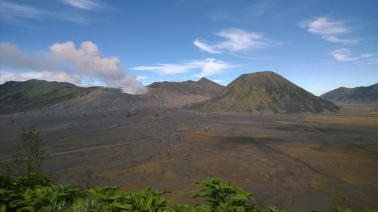 Bromo Permai I : View from infront of our hotel