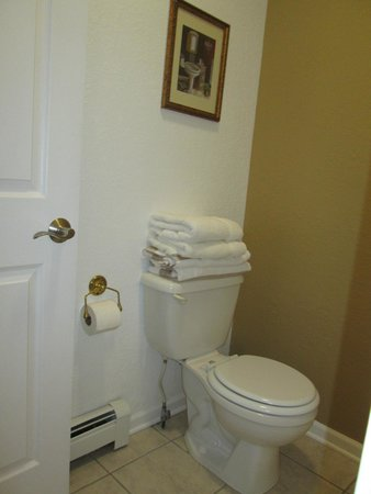 Huron House Bed and Breakfast: Toilet in bathroom
