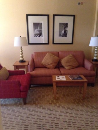 Anaheim Marriott Suites: Sofa bed came in handy