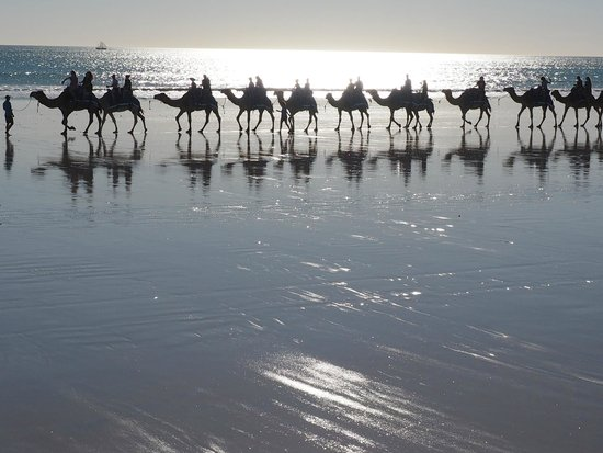 Mid afternoon camel ride on Cable Beach