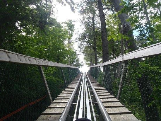 Ridge Runner Mountain Coaster : going up
