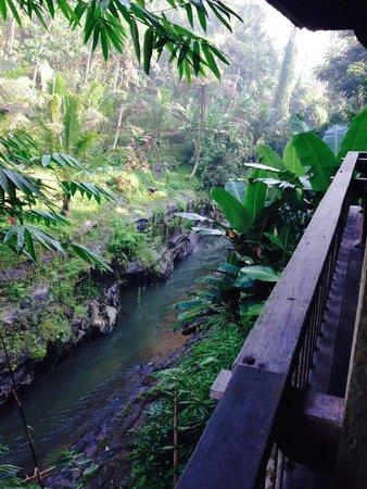 Villa Beji Indah: River at bottom of property