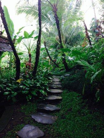 Villa Beji Indah: Pathway between villas