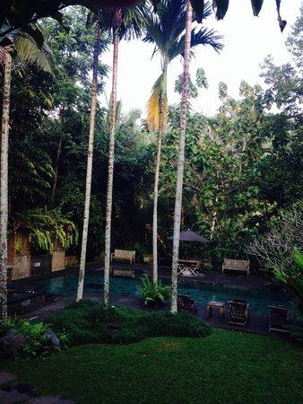 Villa Beji Indah: Pool