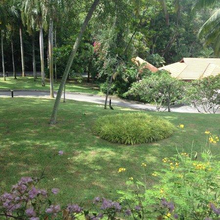 Sofitel Singapore Sentosa Resort & Spa: Garden View