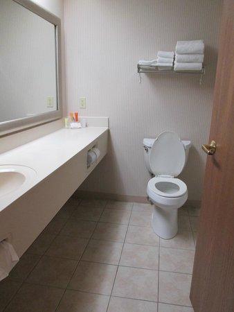 Magnuson Grand Hotel Lakefront Paradise : Bathroom
