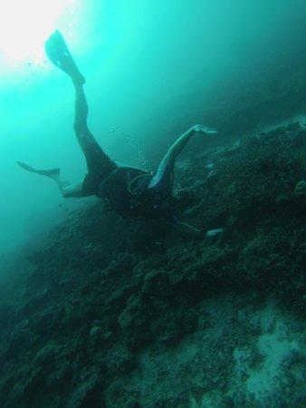 Filitheyo Island Resort: Diving fun