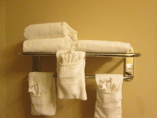 Comfort Inn & Suites Tinley Park IL: towels